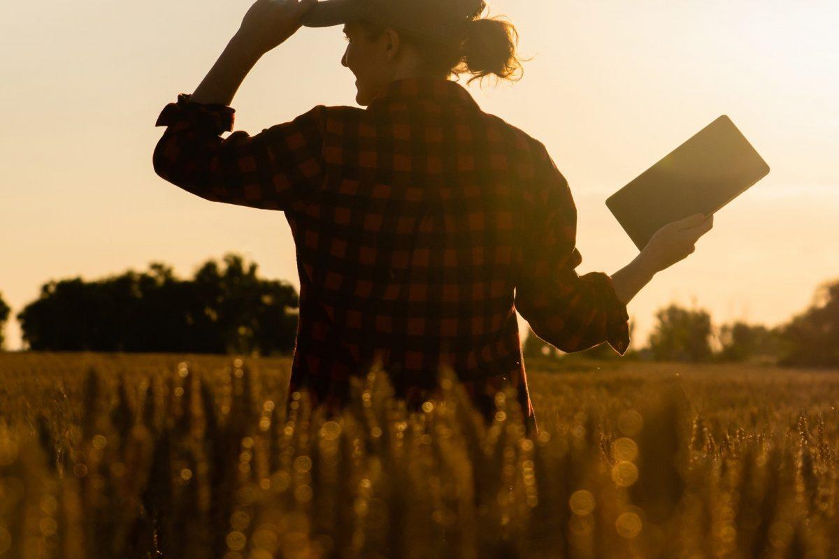 mcrock june 2019 mcrock ups ownership in decisive farming